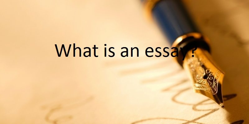 What is an essay?